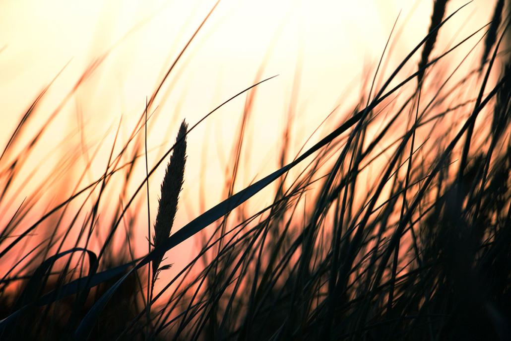 Ostsee Wind